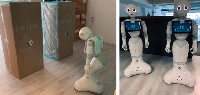 Framework Roboter in der Autismustherapie